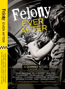 A Social Experiment Gone RIGHT! Felony Ever After Was A Hit!