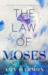 TOUR OF GRATITUDE :: Review :: 6 Stars for The Law of Moses by Amy Harmon :: Guest Post :: Giveaway