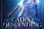 Calico Descending by Keri Lake –> Review